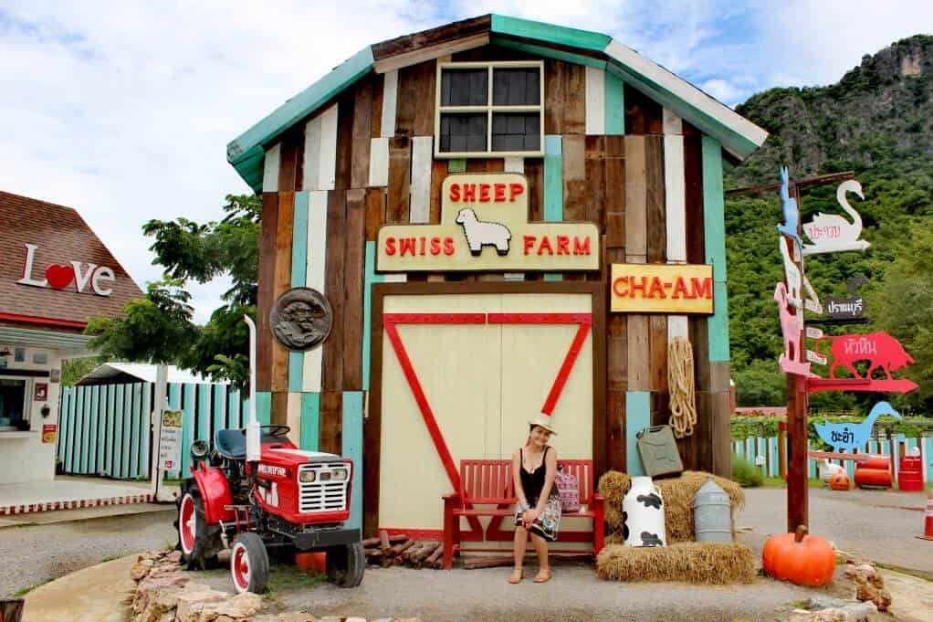 hua hin attractions - Swiss Sheep Farm