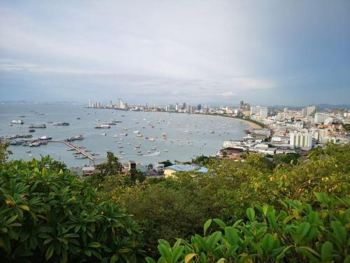 Pattaya City View Point