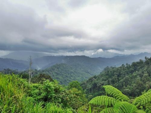Titiwangsa mountains