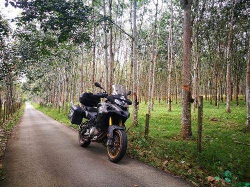 Kampung Batu Sik in Kedah